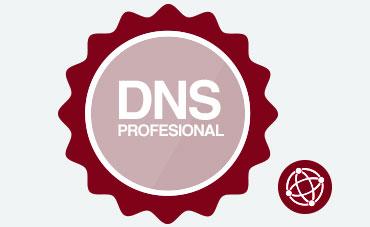 DNS PROFESIONAL